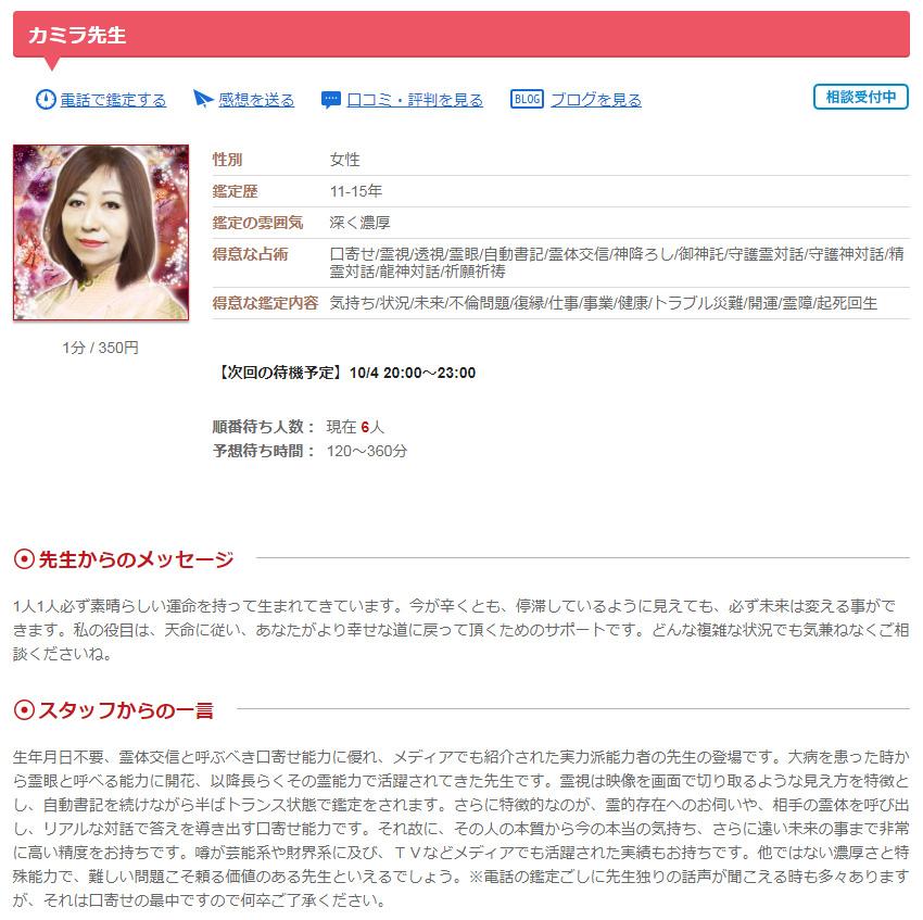 カリスカミラ先生のプロフィールPC画面